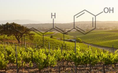 ADL pone en marcha la nueva línea de producción de resveratrol por fermentación
